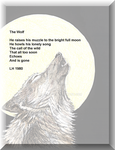 Wolf poem by tazmanette