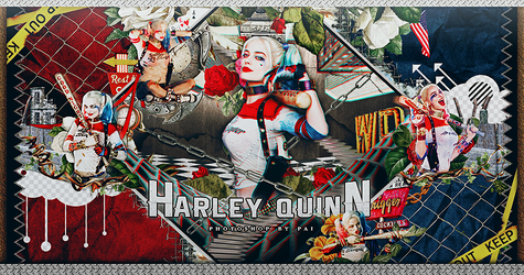 Harley Quinn by Siguo