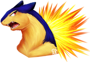 .Typhlosion . by The-Star-Hunter