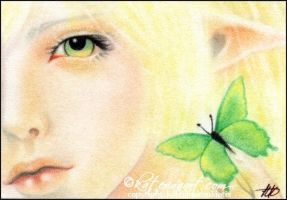 Green Butterfly ACEO by Katerina-Art