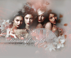 Girls from The Vampire Diaries by SatelliteAlice