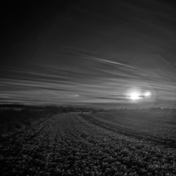 Landschaft-IR-02 by subart59