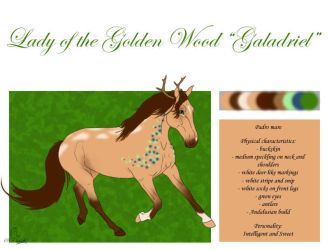 7385 Lady of the Golden Wood (Galadriel) by casinuba