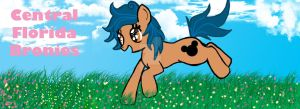 Central Florida Bronies Spring Banner by izze-bee