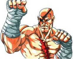 king sagat by trunks24