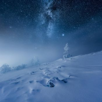 Frozen World by MikkoLagerstedt