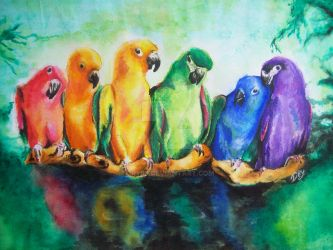 Rainbow parrots by Dry89