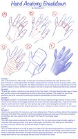 Hand Anatomy Breakdown by M00NBRUSH