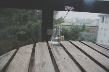 lonely flower by yustine