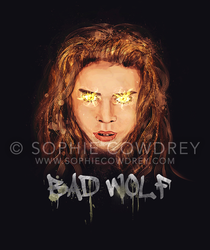 Are You Afraid of the Big Bad Wolf? by sophiecowdrey