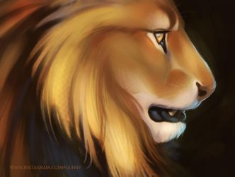 Lion Sketch Practice by Fulemy