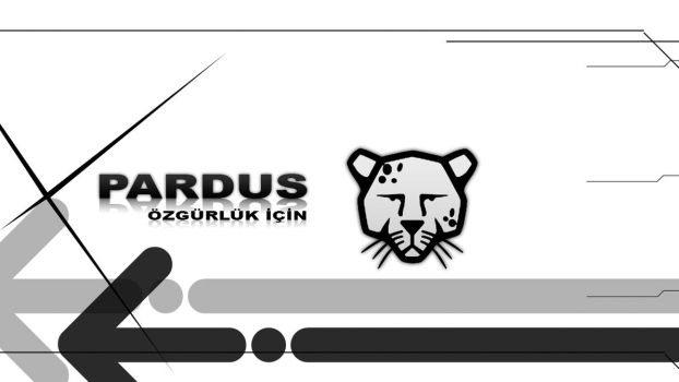 Pardus Wallpaper by fatihdmrg