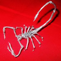 SCORPION in wire by TheWallProducciones