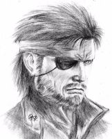 Solid Snake (MGS) by MaXymuSFM