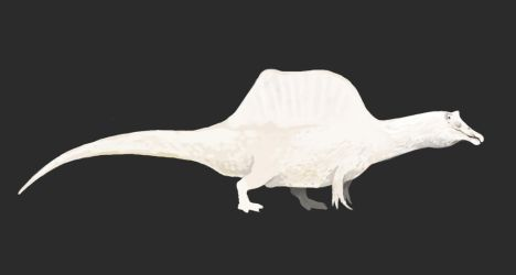 Totally White Spinosaurus by Lythroversor