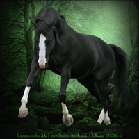 Horse Avatar ~ Truely Graceful by Liberty-Designs