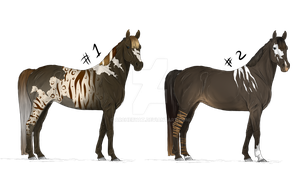 Warmblood horses - Adoptions [CLOSED] by Archeryat