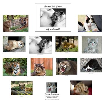 For the love of cats calendar by fangedfem