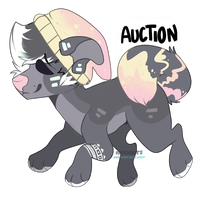 CLOSED| Auction by Adoptionpaws