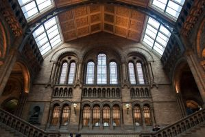National History Museum by vortxbr