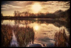 Red Pond by woody1981