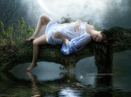 The day I lost you by CindysArt