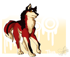 Adoptable Try Out: Thor by SnowyCakes