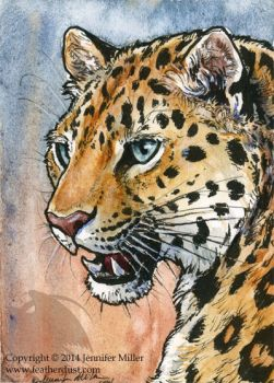 Amur Leopard Miniture Painting by Nambroth