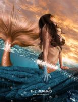 mermaid by Temyplatde