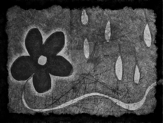 Flower in the rain by kandi