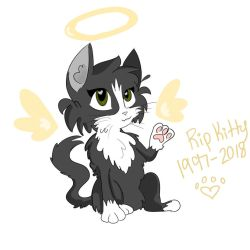 RIP Kitty (my cat) by AmyKoopa