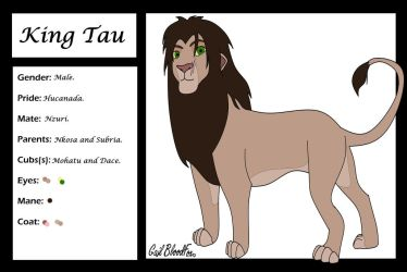 King Tau Character Card by WhiteBleedingFox