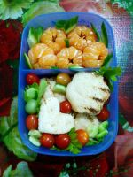 mini tuna cheese sandwich orange bento by plainordinary1