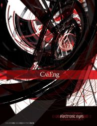 CalEng Winter06 ElectronicEyes by princepoo