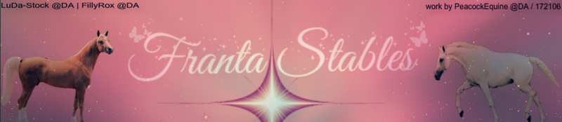 Franta Stables Banner by PeacockEquine