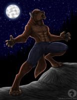 Wolf moon eve by BlueRavenfire