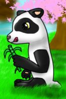 Osore the Panda by Foxymon