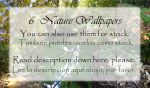 6 Nature Wallpapers (or stock) by Raygirl13