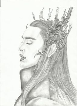 Thranduil by TomMarvoloRiddle13