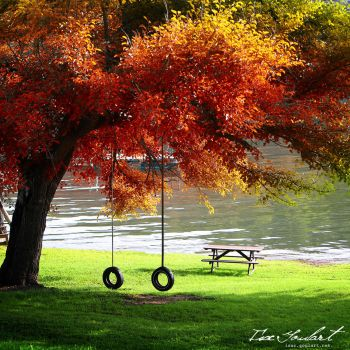 An Autumn Tranquility by IsacGoulart