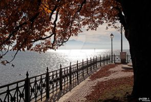 Bodensee. by DominikJPhotography