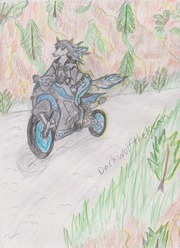 Life in the Fast Lane by Darkwolfthelycan