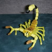 Deathstalker Scorpion by the-gil-monster