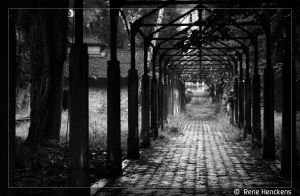 Path to insanity by ReneHenckens