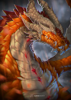 Dragon Portrait by KawaINDEX