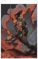 Wolverine Colors by Fico-Ossio