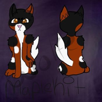 Maplepaw Ref by WolfArcher2