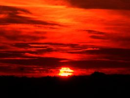 Sunset Red by OPTILUX