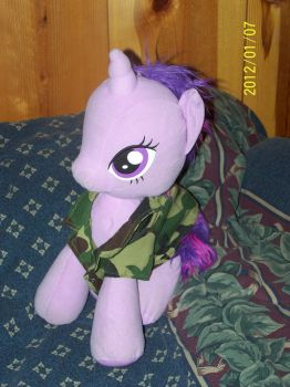 My Little Twilight Plushie LIKE A BOSS! 6 by coonk9