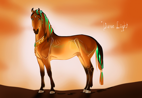 3497 Dune Light by NorthEast-Stables